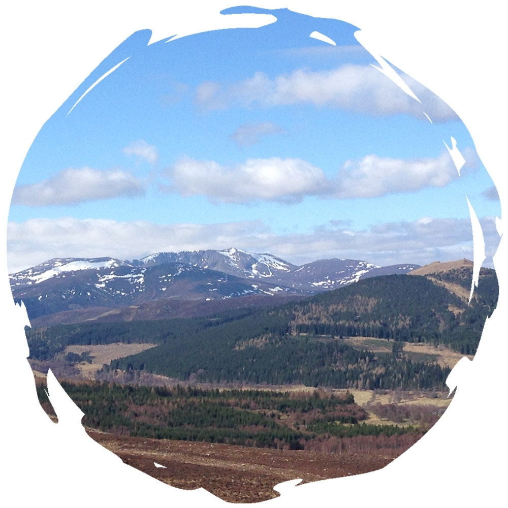 Views of Loch Nagar - Deeside