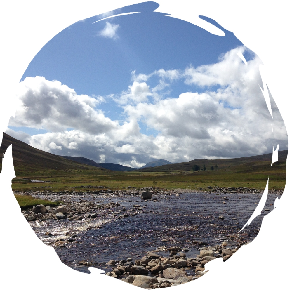 Ride with us - guided rides - view of cairngorms